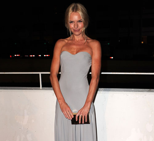Kate Bosworth looked sweet in a simple McQueen gown at a charity event in January.