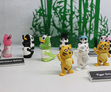 Photos of the Bone Collection USB Drives