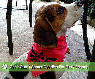 Geeky Gamer Gear For Pets