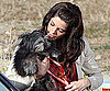 Photo Slide of Ashley Greene With a Dog