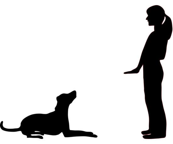 Dog Get It Hand Signal