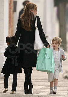 Are You Happy Angelina Investigated Her Pony-Hair Bag Before Buying?