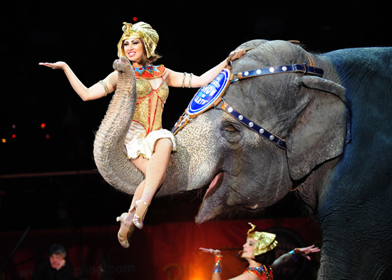Five Tips For Tot's First Visit to the Circus