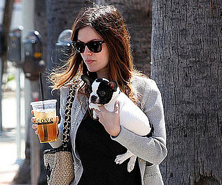 Slide Photo of Rachel Bilson With Cute Dog