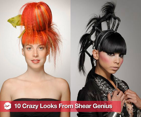 10 Crazy Looks From Season 3 of Shear Genius
