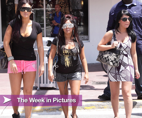 Picture of Jersey Shore Cast in Miami