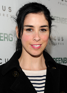The Sarah Silverman Program May Not Be Renewed For Fourth Season