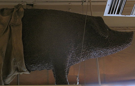 Atop the entrance sits a pig — which bears a strong likeness to Rachel, Pike Place Market's unofficial bronze mascot — made entirely out of roasted coffee beans.