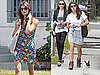 Pictures of Ashley Greene Walking Her Dog