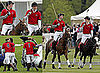 Pictures of Prince Harry and Prince William at Polo