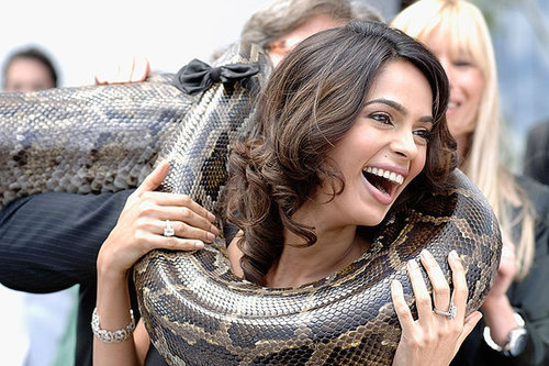 Photo of Mallika Sherawat Posing With Snake
