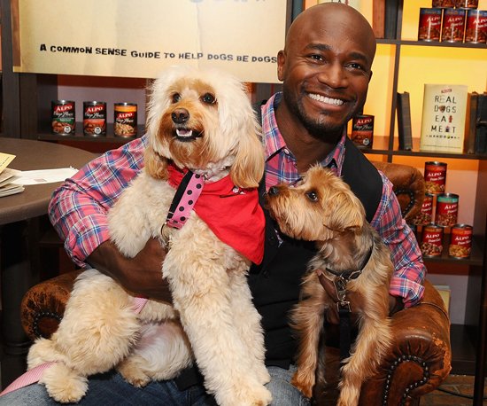 Taye Diggs Dawdles the Day Away with Adorable Doggies