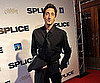 Slide Picture of Adrien Brody at Splice Premiere in Toronto