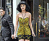 Slide Picture of Katy Perry Wearing a Leopard Print Dress in NYC