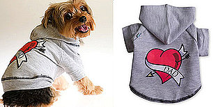 Dad-Themed Pet Gear: Spoiled Sweet or Spoiled Rotten?