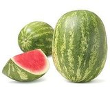 Watermelon Cooler Recipe 2010-07-01 13:13:43