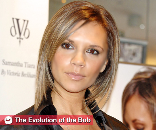 See the Evolution of the Bob