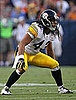 Troy Polamalu of the Pittsburgh Steelers Has Hair Insured For $1 Million