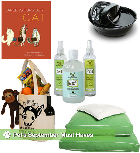 PetSugar's Favorite Things For September