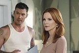 New Desperate Housewives Photos
