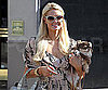 Slide Picture of Paris Hilton Shopping in LA With One of Her Dogs