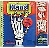 Klutz's The Hand Book and Moveable Skeleton
