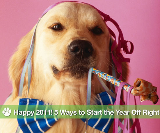 Happy 2011! 5 Ways to Start the Year Off Right