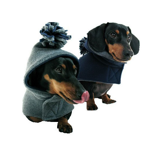 Eco Dog Coat, $67