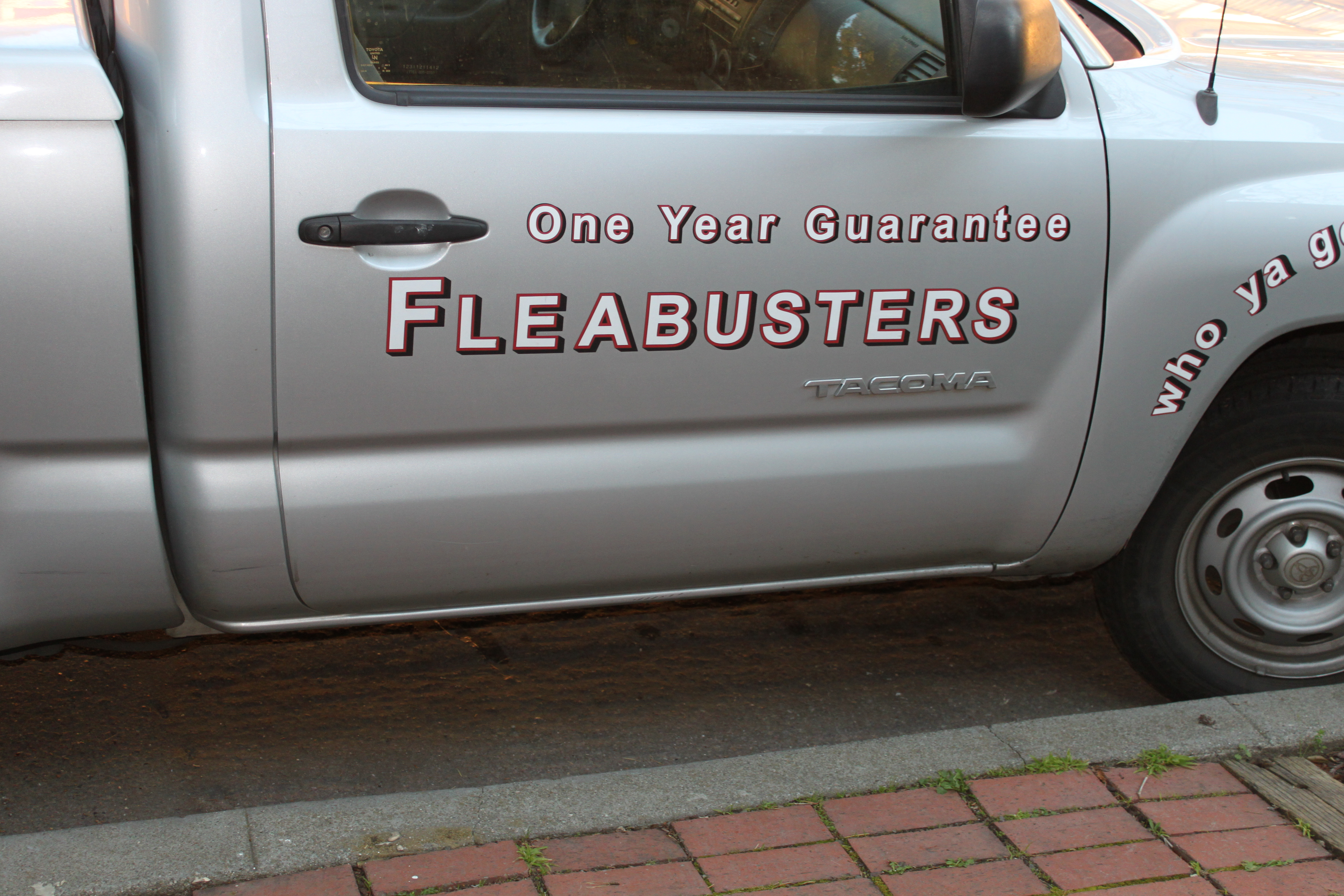 I'm so glad we called Fleabusters!