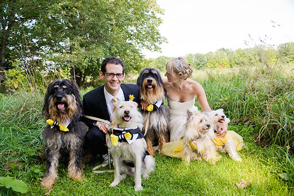 Yep, this wedding party included not one, but five dogs!  Photo by Anna Page Photography
