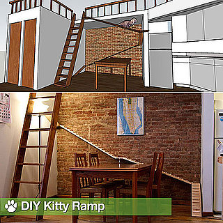 DIY Cat Ramp For Home