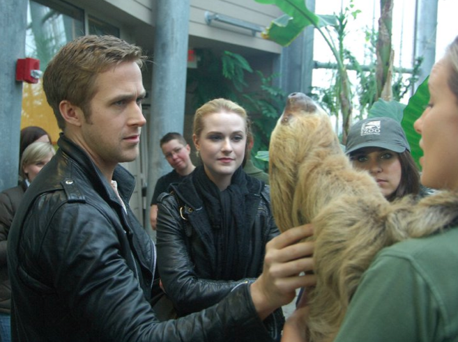 Seriously Adorable — Ryan Gosling Makes Some Animal Friends at The Cincinnati Zoo!