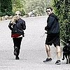 Pictures of Ryan Phillippe and Amanda Seyfriend With Their Dogs in LA