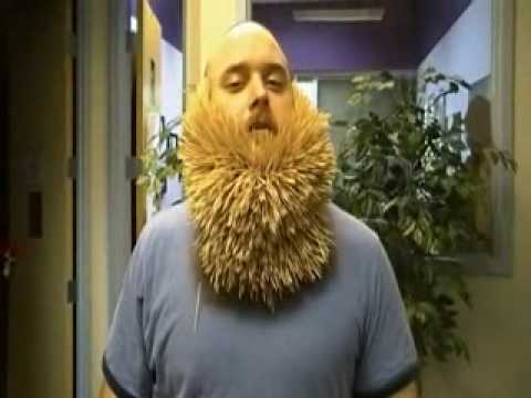 Man Puts Nearly 3,000 Toothpicks in His Beard