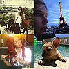 Pictures of Celebrities and Models on Twitter 2011-05-31 13:09:30