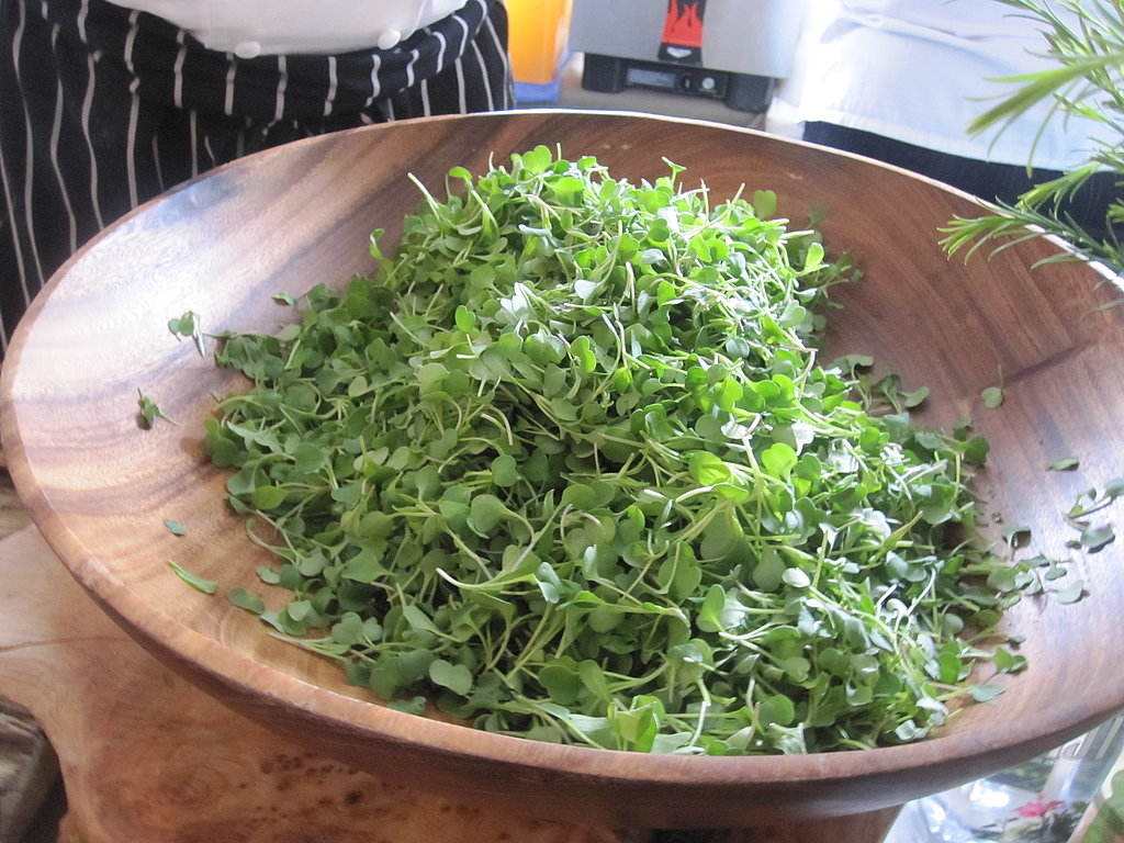 A giant bowl of microgreens. These garnished tiny bites of duck confit meatballs.