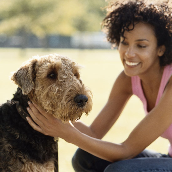 The 10 Most Pet-Friendly Cities in the US