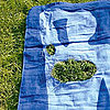 Must-See: Gillette Towels Use Grass as &quot;Body Hair&quot; 2011-06-22 14:14:37