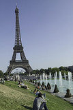 Picnic Under the Eiffel Tower