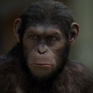 Rise of the Planet of the Apes Audience Review