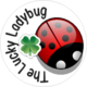The Lucky Ladybug&#39;s picture