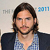 Ashton Kutcher&#039;s Two and a Half Men Character Name and Job