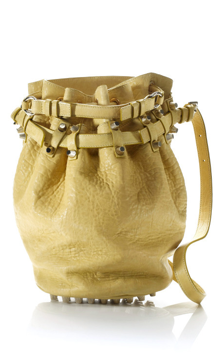 Alexander Wang Citrus Diego Bucket Bag, $825