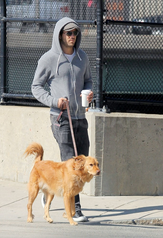 Ryan took Baxter for a walk in NYC.