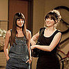 New Girl Audience Review