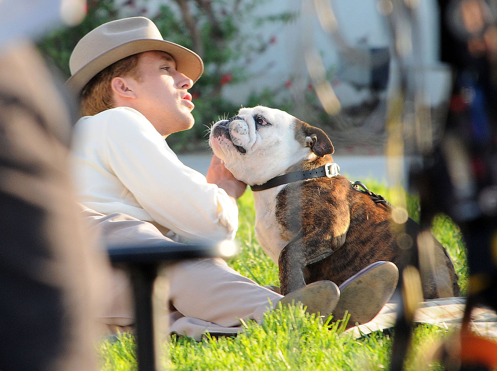 Ryan Gosling cooed at a bulldog.