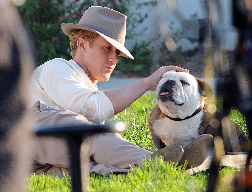 Ryan Gosling pet a bulldog.