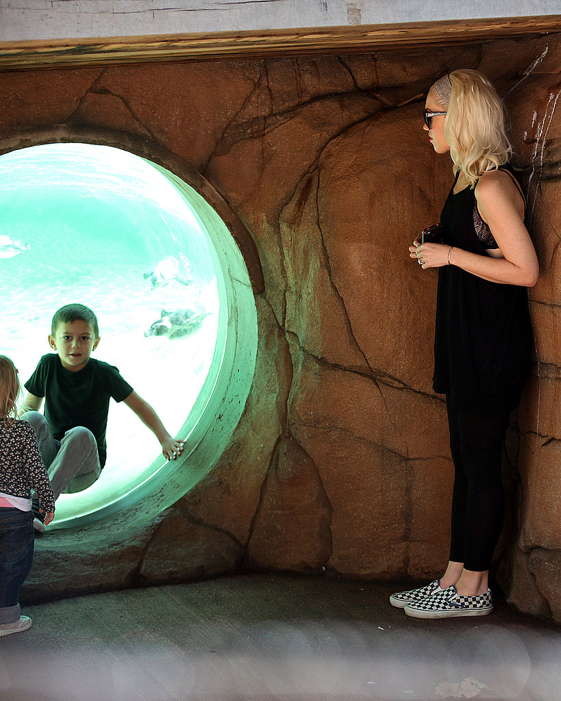 Gwen Stefani watches Kingston at a London zoo.