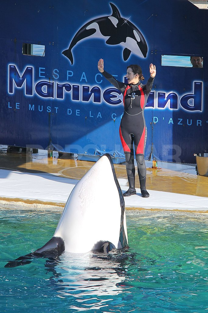 Marion Cotillard played with an orca whale.