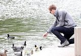 Ryan took a break on the set of Drive to feed some ducks at a nearby lake in 2010.